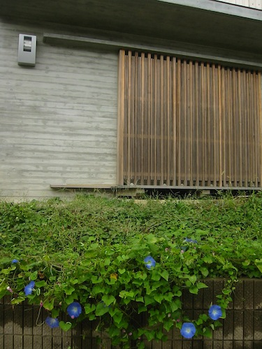 isshiki_1007_2.JPG