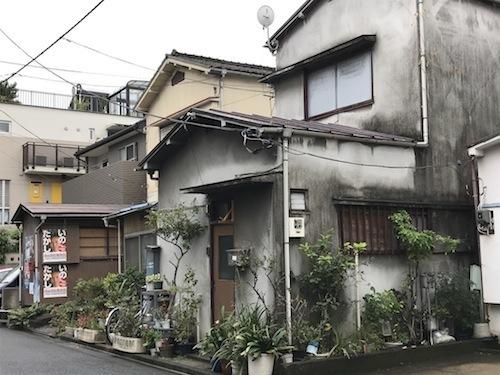kiyo_03.JPG
