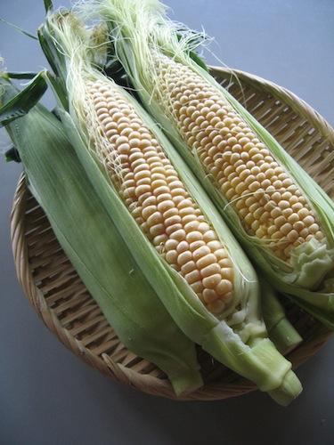 corn_0622_1.JPG