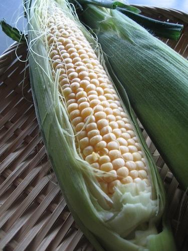 corn_0622_3.jpg