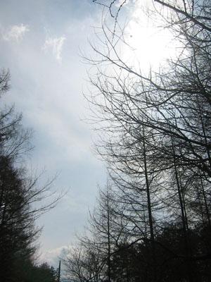 kobuchi_0405_1.JPG