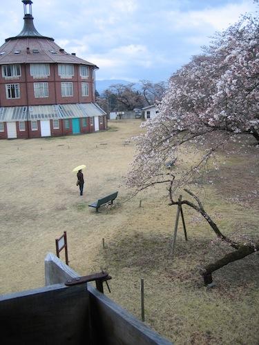 tetsu_0407_1.jpg